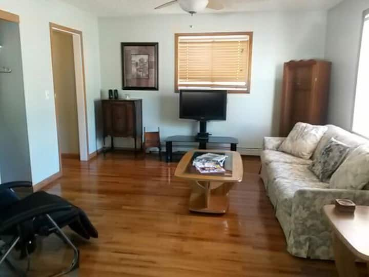 Centeral and Spacious 1 bedroom w/ pull out couch