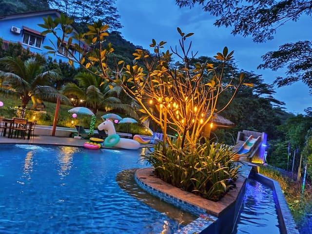 The Jungle Rainforest Retreat (Dmg Retreat)