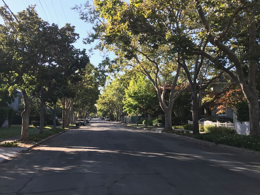 Plenty of parking available on this tranquil, tree-lined street.