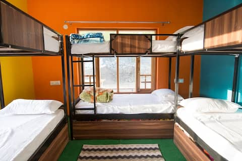Backpacker Dorms (1 bed in 6 beds mix dormitory)