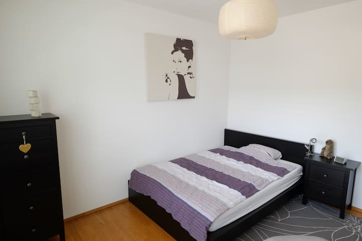 Cozy room with own bathroom (close to city center) - Basel - Byt