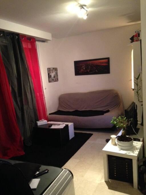 Coin salon, second angle de vue (second canapé-lit)