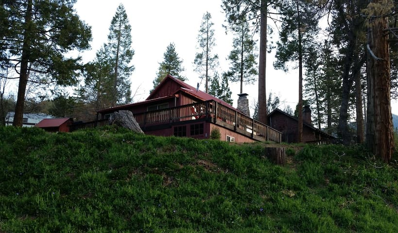 Cozy Sequoia Mountain Cabin Camp Nelson
