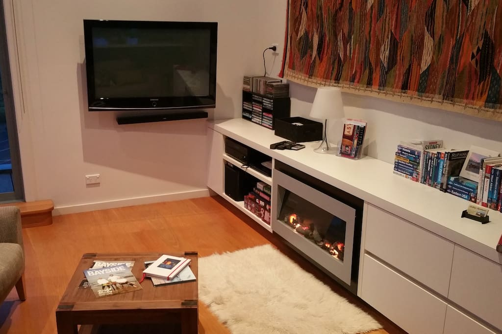 TV, stereo, DVD, romantic fireplace style heating.