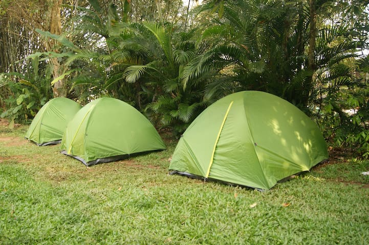 Camping - Beachfront Hostel - Pe na Areia