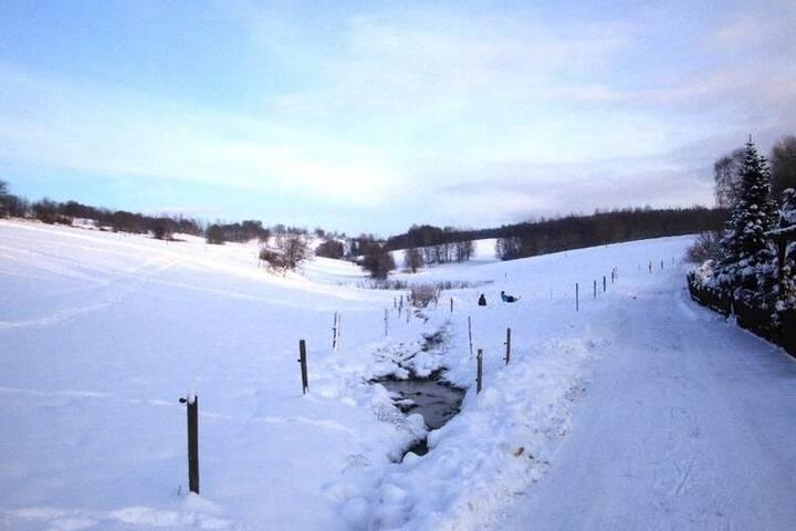 Region [winter] (>5 km)