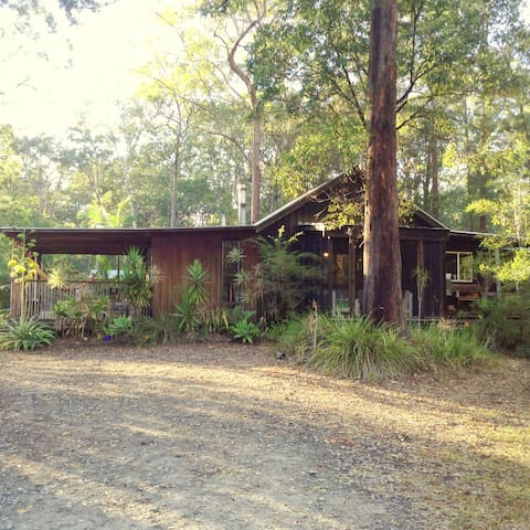 Rustic home in the gum trees