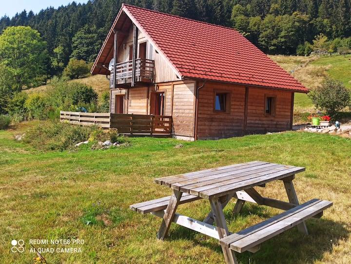Gérardmer : Chalet vue magnifique 3km lac / pistes