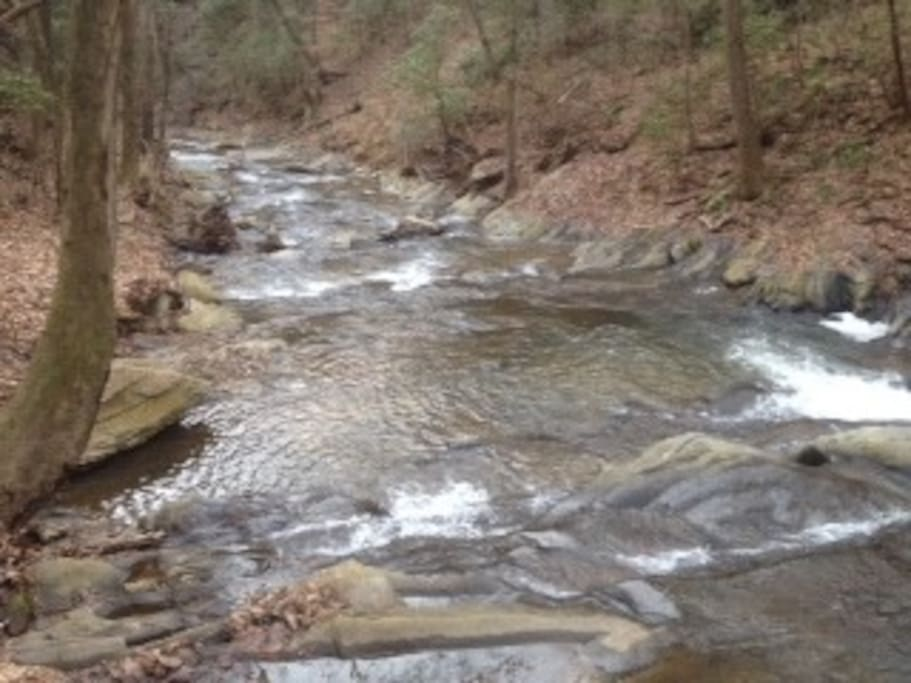 Hike down to creek , located on rear of property