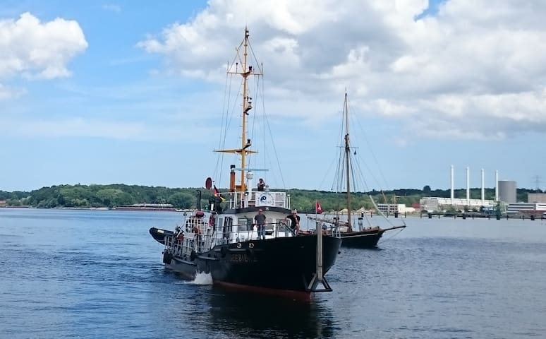 Schiff MS SEEBIENE in Lassan Kabine 2