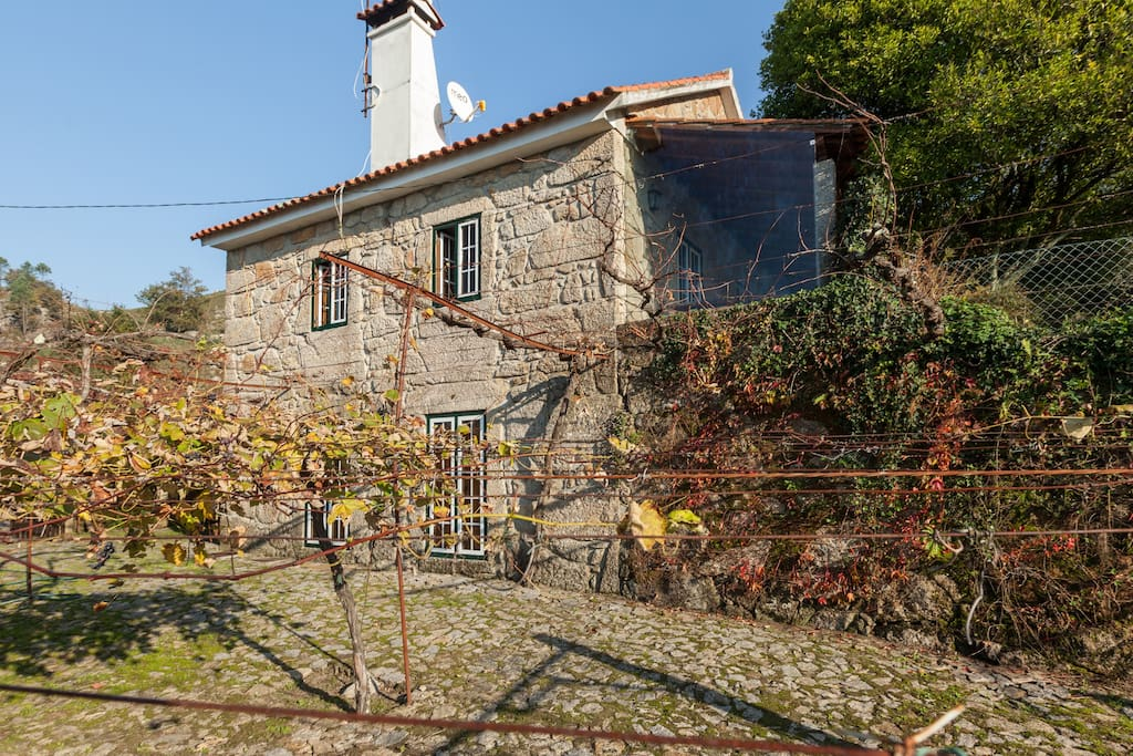 2 quartos ao nivel da ramada_2 rooms level to traditional vine-yard