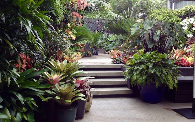 Ponsonby Villa - A Subtropical Oasis. - Auckland - House