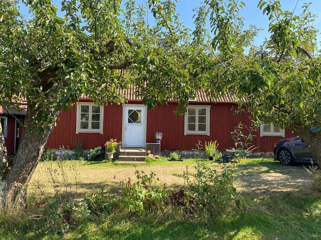 Lovely cottage in Kivik´s apple orchards.