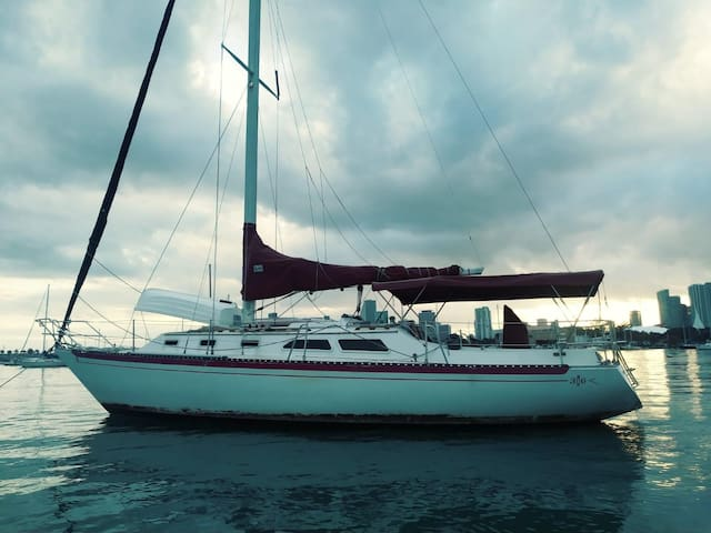 Utimate Experience @ 36ft Islander Sailboat.