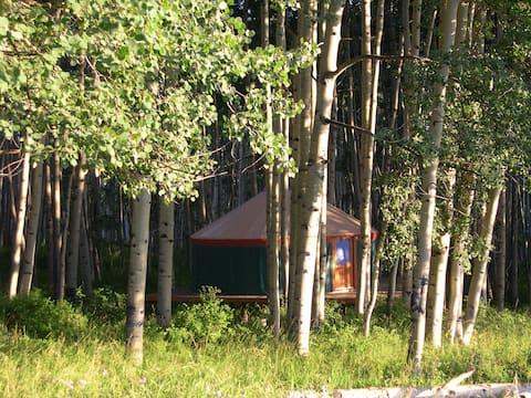 Mountaintop Green Yurt in SW Colorado inside SJNF