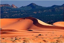 Coral Pink Sand Dunes State Park - 19.7 miles