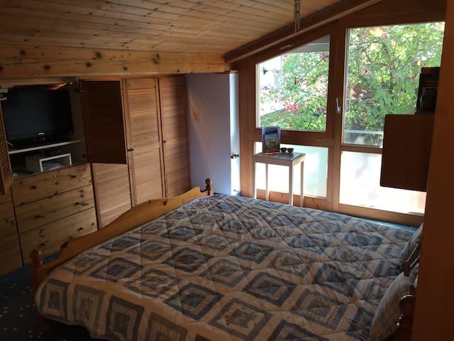 Schlafzimmer mit begehbarem Schrank und TV