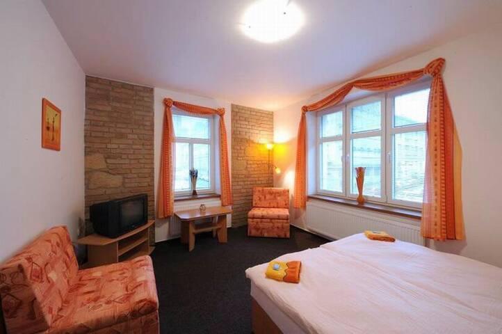 Samostatný a vybavený pokoj pro 2 osoby - Pilsen - Casa