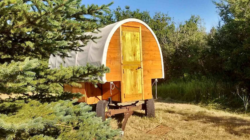 Enchanting Gypsy Wagon Cabin - Malad city - 其它