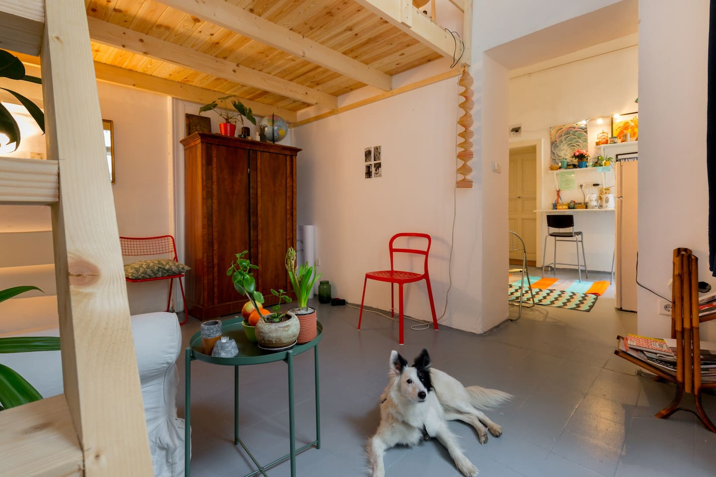the dog doesn't come with the apartment, sorry
