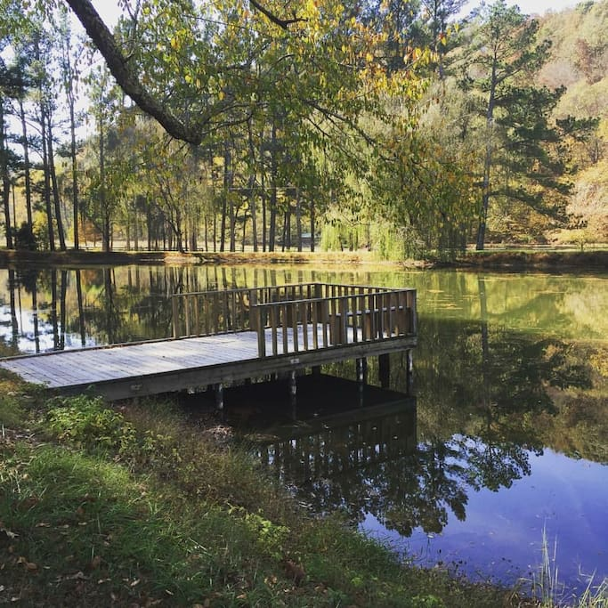 Pond with Dock