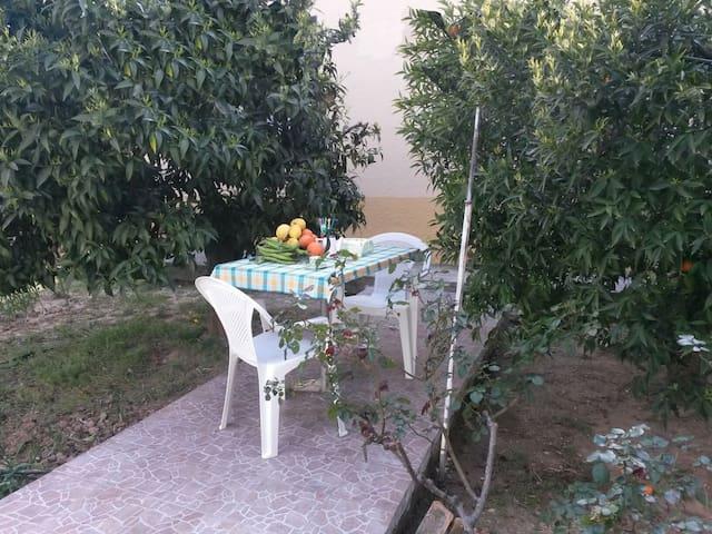 Villetta tra mare e campagna Matera - Marconia - House