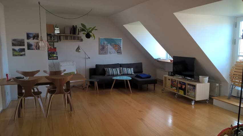 Bright and spacious family apartment
