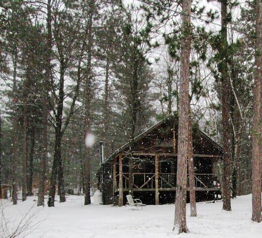 Cozy Cabin - Schuyler Falls - Cabaña
