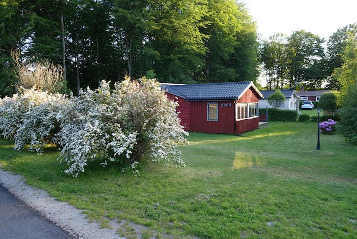 Norje Monsun, Sölvesborg - Sölvesborg