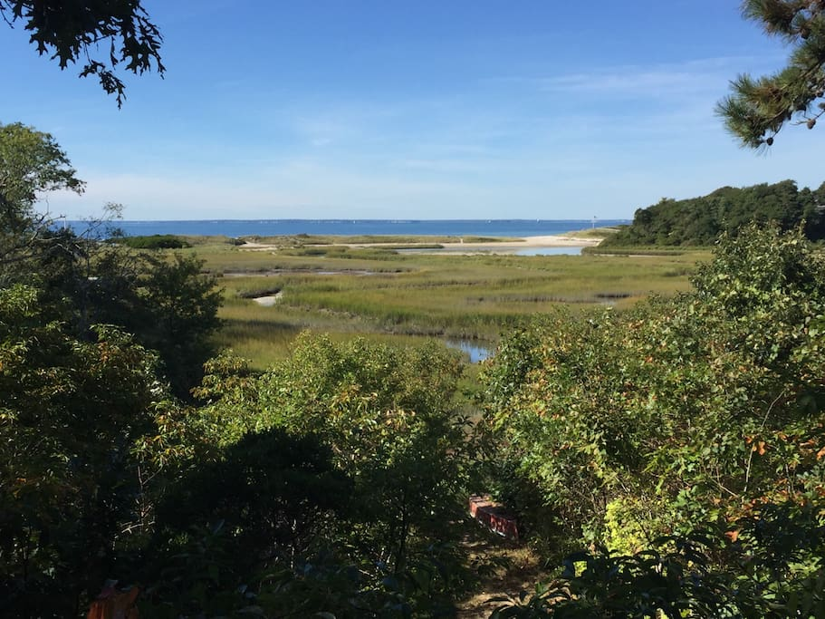 Listen to the birds while enjoying a cocktail on the deck and staring out at the beauty. Walk through the marshlands at low tide.