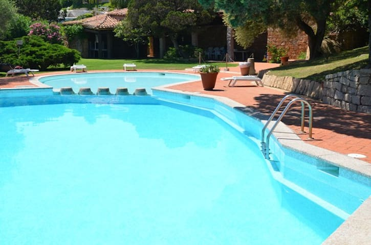 The swimming pool of the resort