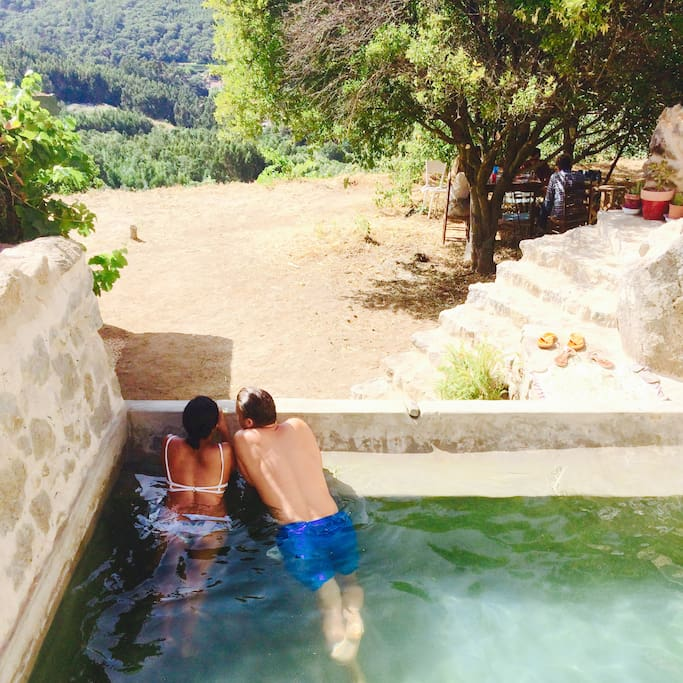 Summer in the plunge pool