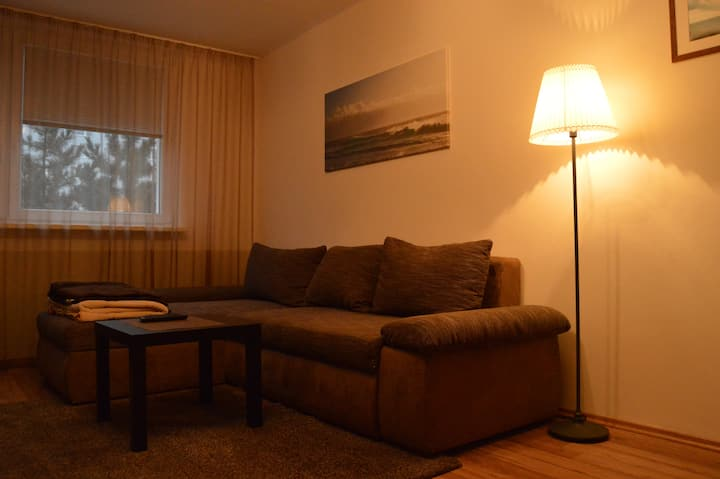 Cozy room with a cat in Petrzalka - Bratislava