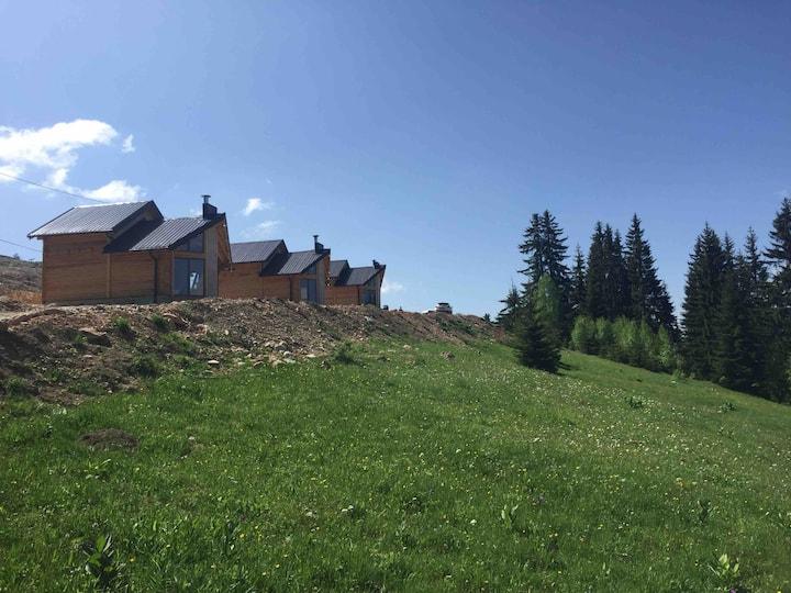 Villat Shkreli Kosove