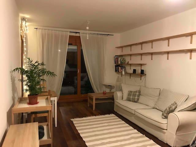 Minimalistyczne mieszkanie z dobrą komunikacja