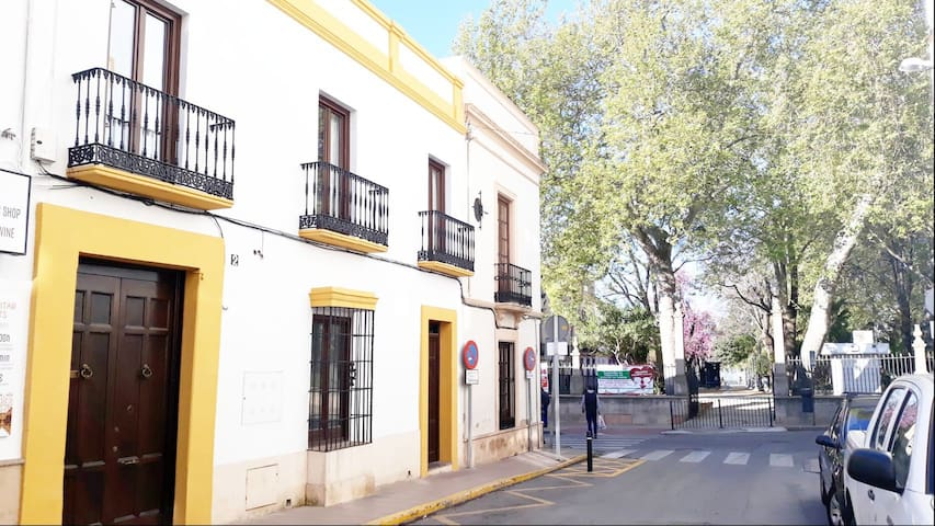 MIRADOR DEL TAJO ,CENTRO HISTORICO DE RONDA