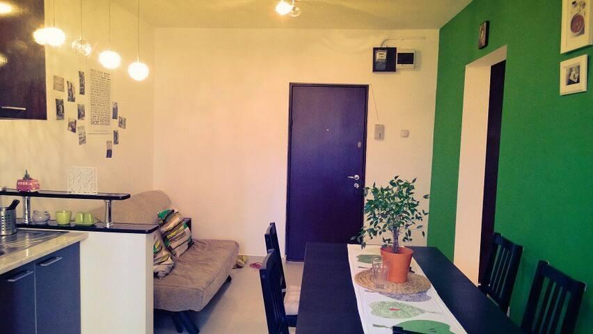 Cosy room in a welcoming flat - Bükreş - Daire
