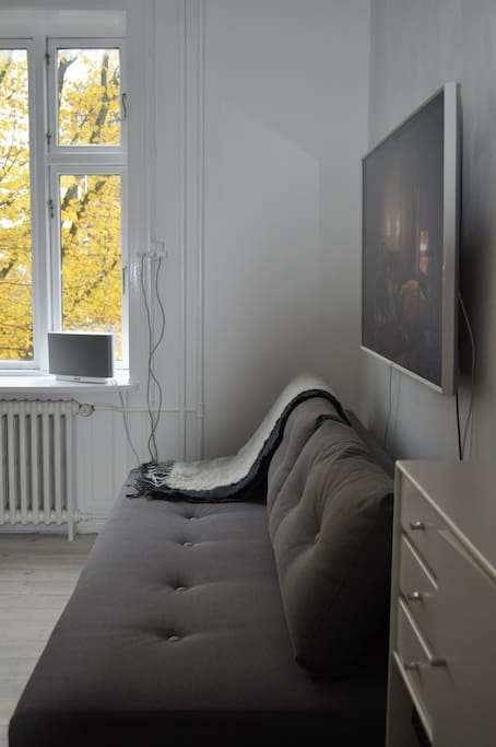 Sleeping couch and a 55 inches smart tv. to watch a good movie on Netflix or HBO.