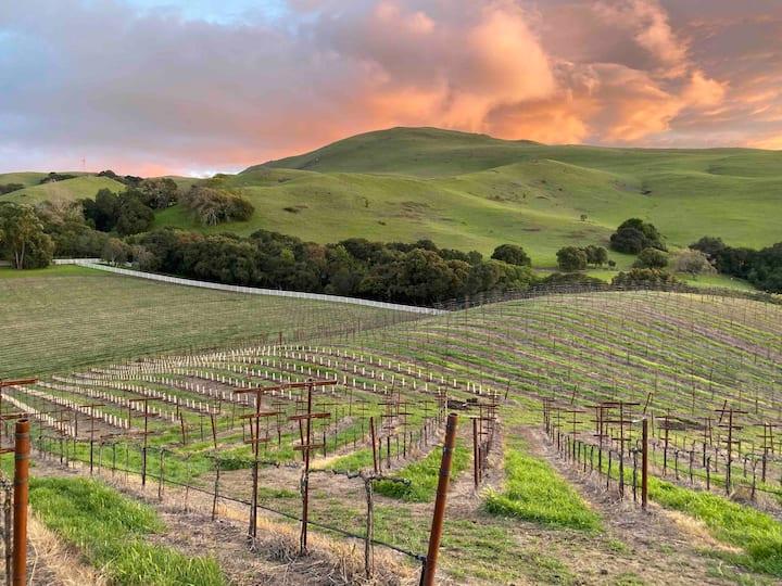 Mission Peak Ranch: Farm Stay