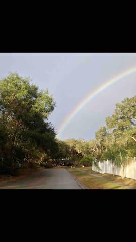 Serene Zen Retreat in Maitland, Fl.