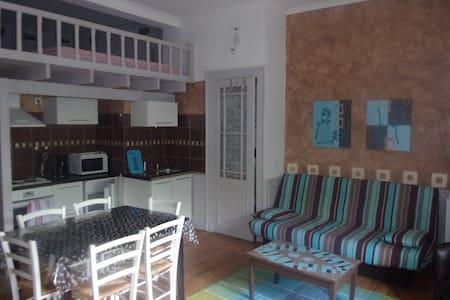 STUDIO 4-6p EAUX BONNES - Apartment