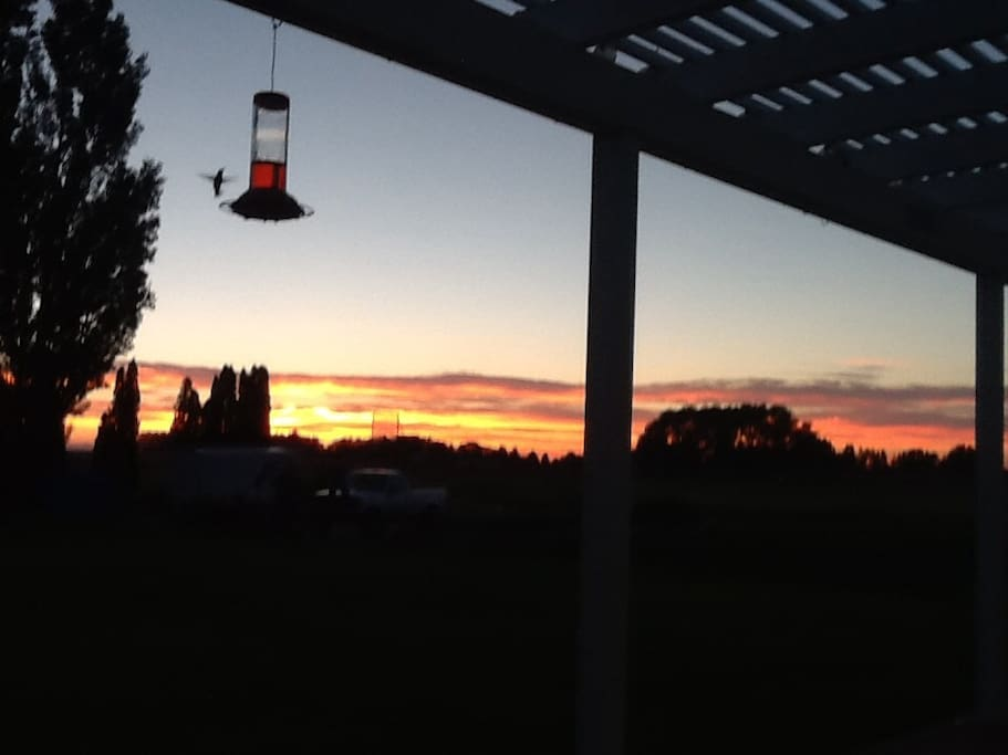 Enjoy the sunsets from the back deck