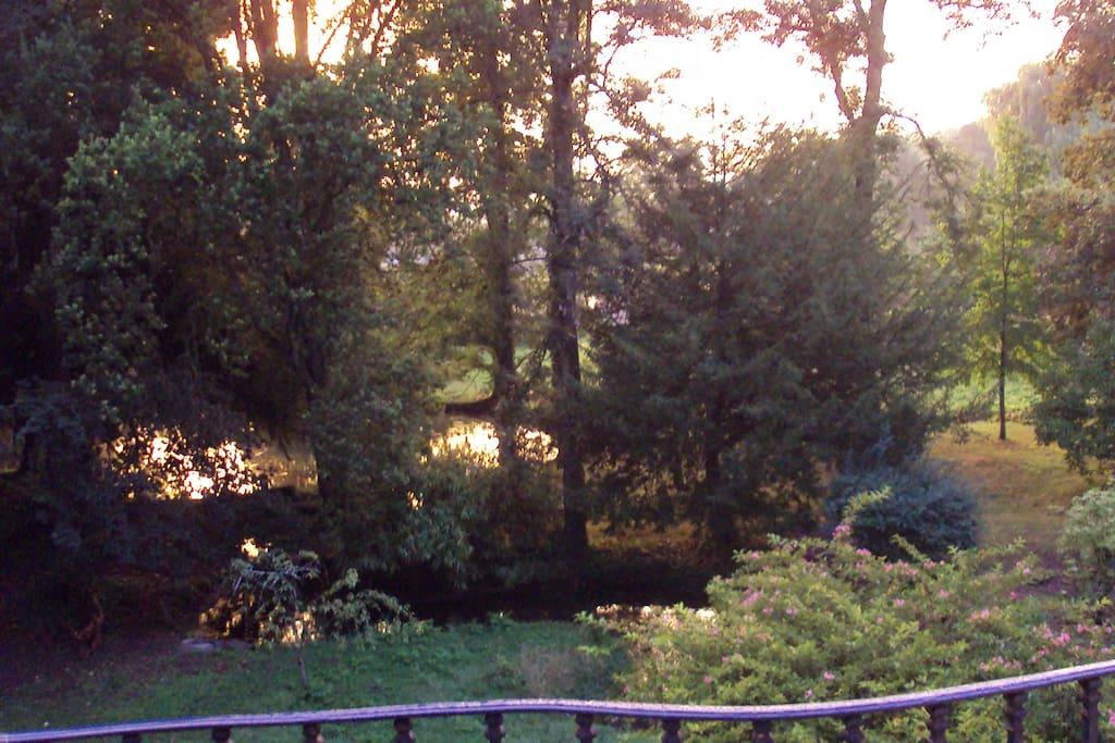 le parc vu du balcon