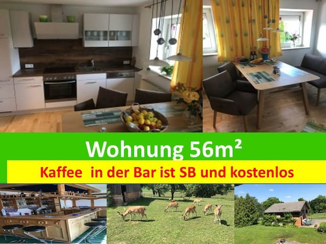 Wohnung  56m² am Stadtrand von Wels