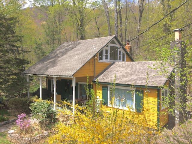Streamside Woodstock Getaway in Catskill Park