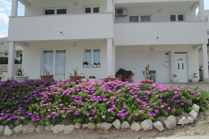 Nice studio apartment with roofed terrace,300m distant from the beach