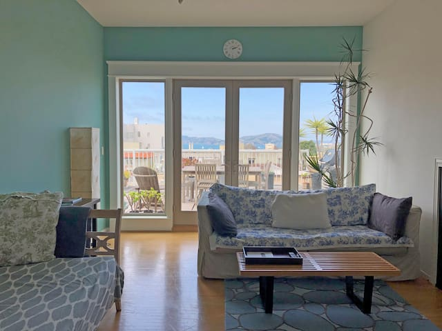 Open, airy Pacific Heights 1 BR with Bay Views