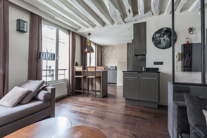 Warm design aptmt  in central Paris