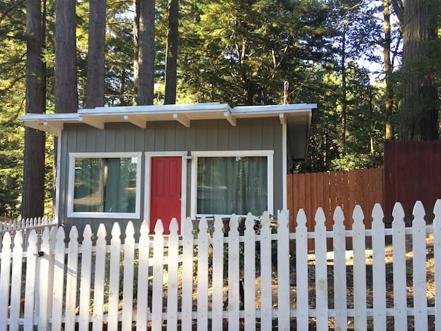 Cabin Retreat in the Redwoods