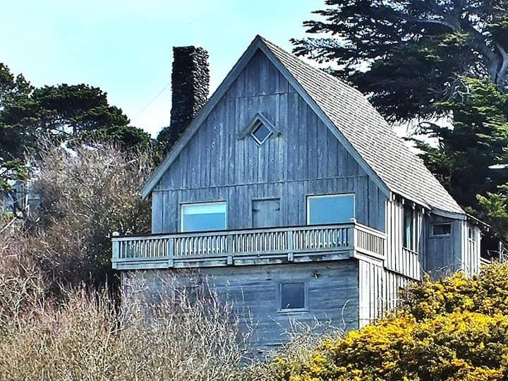 Old Rustic Beach Cabin